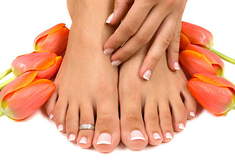 Elegant tulips manicured hand and pedicured feet