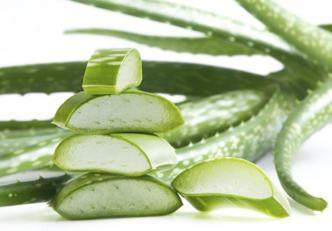 Benefícios do aloe vera para tratar a acne