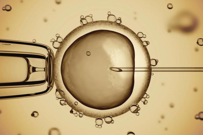 5 perguntas e respostas sobre reprodução assistida