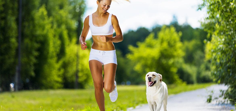 5 maneiras de se exercitar com o seu cão