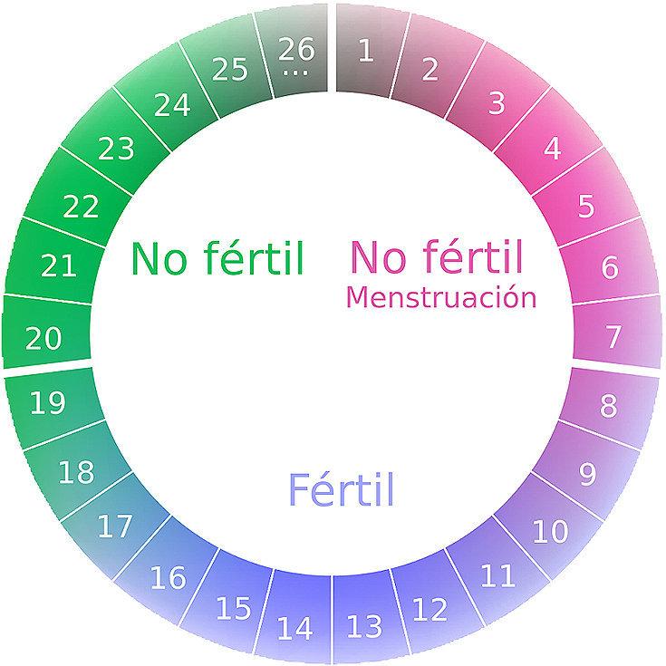 Aprenda tudo sobre o período fértil